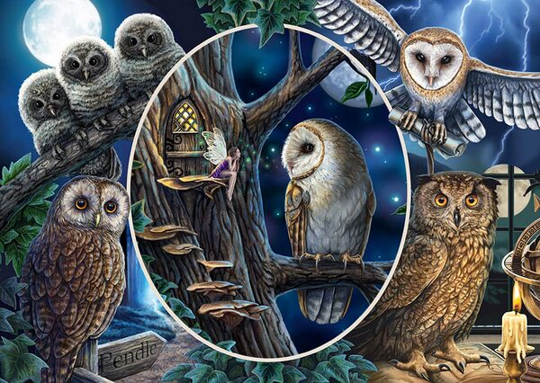 Пъзел Schmidt от 1000 части - Мистериозните сови, Лиса Паркър