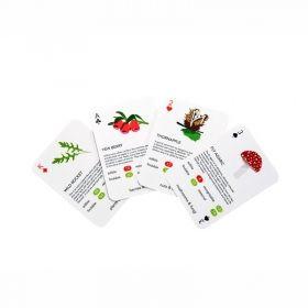Карти за игра Kikkerland - Растения