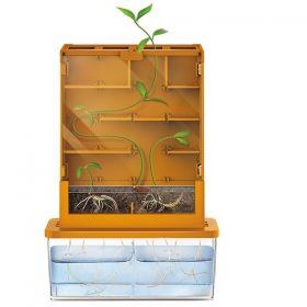Образователен комплект 4M - Растение в лабиринт