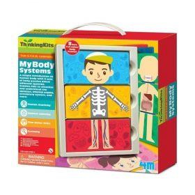 Образователен комплект 4M - Системите в тялото