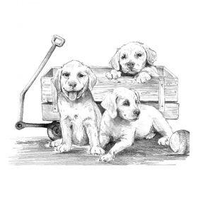 Комплект за рисуване с моливи Royal - Кученца в количка, графика